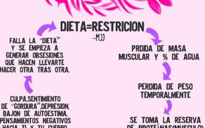 El Ciclo De la Dieta